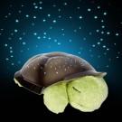 CLOUD-B nakts lampiņa Bruņurupucis