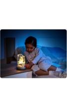 REER 52131 ColourLumy Owls LED naktslampiņa